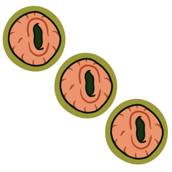 Eyeholes stickers - Rick and Morty fan art